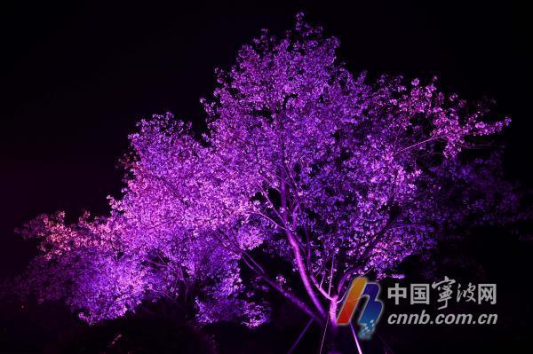 微信图片_20210320183254.jpg