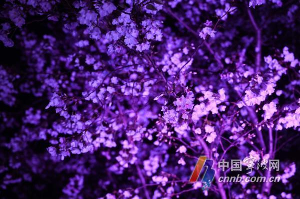 微信图片_20210320183323.jpg