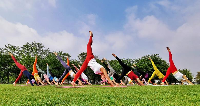 植物园里秀瑜伽