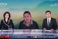 """央视播5分钟短片 讲述""""85后""""宁波女孩为烈士寻亲"""