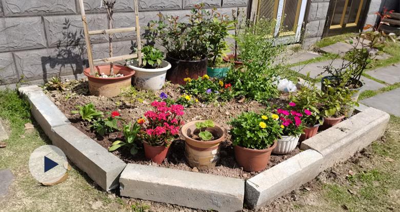 居民认领空地 鄞州这个小区多出了一个个小花园