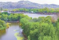 一湖碧波催新绿