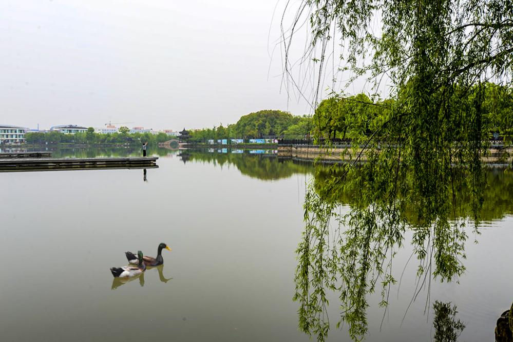 烟云仁湖公园