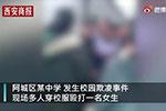 哈尔滨发生一起校园欺凌事件 校长等被问责