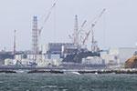日福岛海域鱼类放射性物质超标被禁止上市