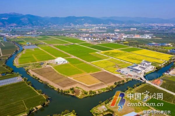 海曙古林镇入列国家农业产业强镇创建名单