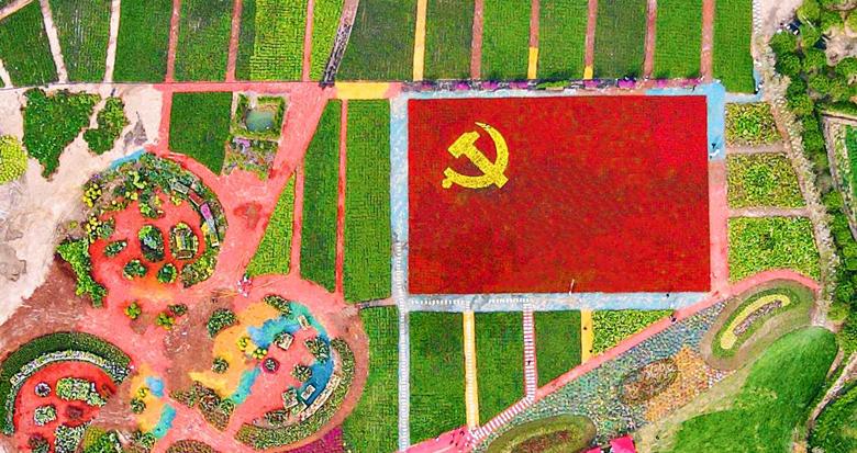 """宁海这个村用13万盆鲜花""""做""""了面党旗"""