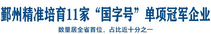 """鄞州精准培育11家""""国字号""""单项冠军企业"""