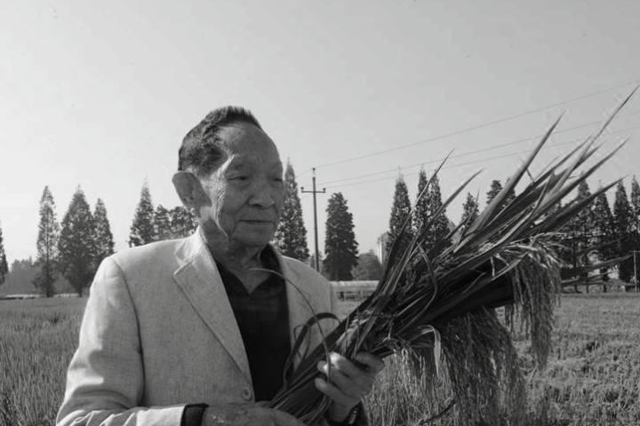 """默哀!""""共和国勋章""""获得者袁隆平逝世 享年91岁"""