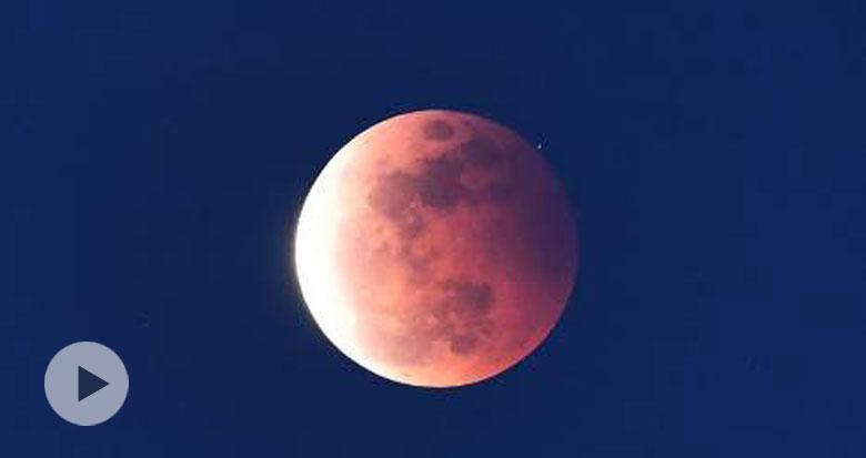 视频来了!超级红月亮现身