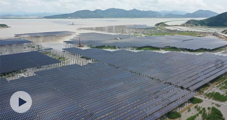 全国最大海岸滩涂渔光互补光伏项目在象山并网发电