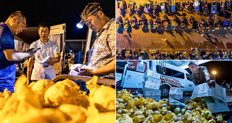 凌晨2点多 实拍奉化最大的桃子批发市场