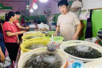 宁波的吃货们 你们准备好了吗?8月1日起东海休渔部分解禁