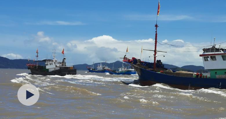 今天东海部分开渔!象山千艘渔船出海捕鱼