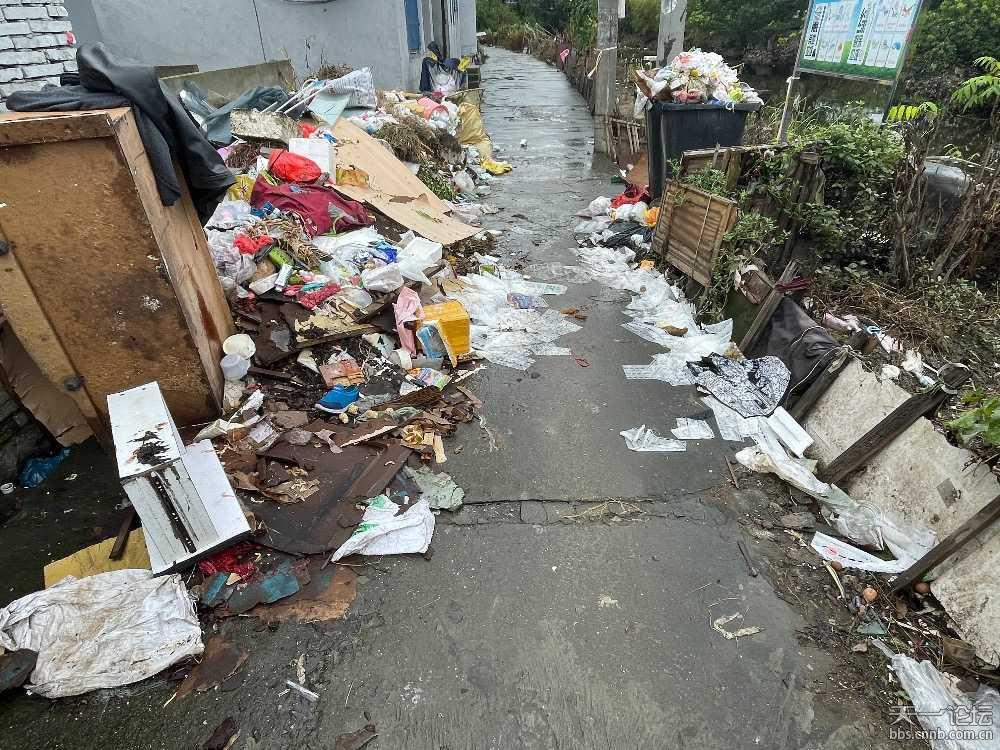 古林共任村路面堆满垃圾 臭气熏天