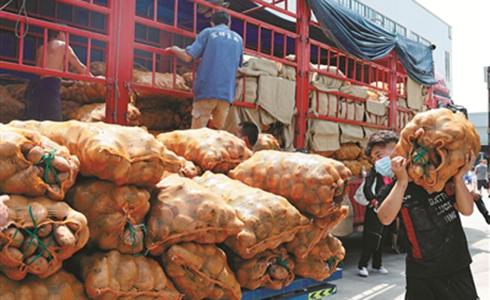 19吨凉山土豆首次进入宁波市场