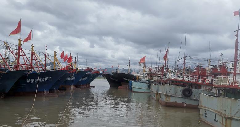 台风来袭 象山等地渔船进锚地避风
