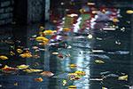 气温跌至2字头!11日至13日 宁波有中到大雨局部暴雨