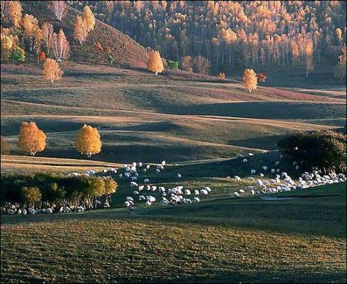 秋天 欣赏 上海/静静的欣赏 秋天美景[组图]